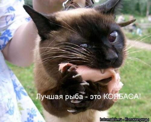 http://gbutler.ru/forum/download/file.php?id=15269&t=1&sid=195e3165e3510a338c401cba399bdf13
