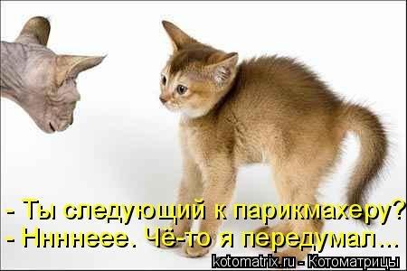 http://gbutler.ru/forum/download/file.php?id=16650&sid=a3cef8d70a255132352470b00cc4b1f9