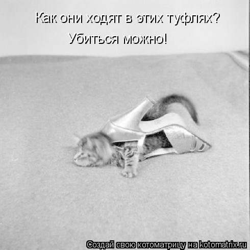 http://gbutler.ru/forum/download/file.php?id=18221